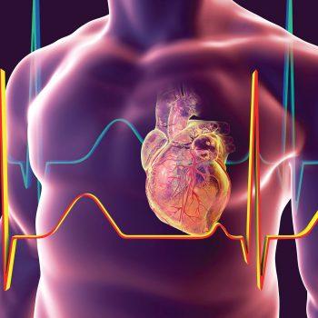 http://www.plazmamed.eu/wp-content/uploads/2021/01/kardiology-350x350.jpg